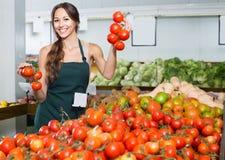 Adult female seller holding fresh ripe tomatoes. Adult female seller wearing apron holding fresh ripe tomatoes on market Royalty Free Stock Photo