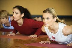 Free Adult Females In Yoga Class. Royalty Free Stock Photo - 2037545