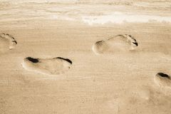 Adult footprints on wet white sandy coast. No people. Water not visible. Closeup horizontal view stock images