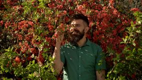 Adult funny man face grimace surrounded by blooming flowers. Emotions and facial expxression. Hipster enjoy scent of. Flowers in spring. Man in background of stock footage