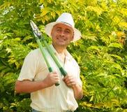 Adult gardener Stock Photos