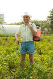 Adult gardener working Stock Photo