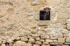 Adult goat looking out of barn window. Life on farm. Ecotourism concept royalty free stock photography