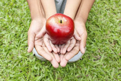 Adult hands holding kid hands with red apple Royalty Free Stock Images