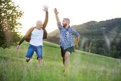An adult hipster son and his senior father jumping in nature at sunset. An adult hipster son with his senior father jumping on a meadow in nature at sunset stock images