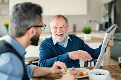 An adult hipster son and senior father indoors at home, eating light lunch. An adult hipster son and senior father sitting at the table indoors at home, eating stock images