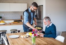 Adult hipster son and senior father indoors at home, having lunch. stock photography