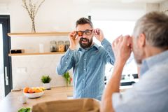 Adult hipster son and senior father indoors in kitchen at home, having fun. stock photo