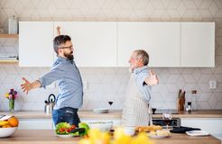 Adult hipster son and senior father indoors in kitchen at home, having fun. stock images