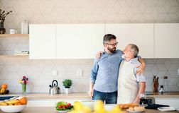 Adult hipster son and senior father indoors in kitchen at home, talking. royalty free stock photos