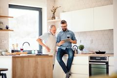 Adult hipster son and senior father indoors in kitchen at home, using tablet. stock photos