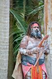 Adult Indigenous Australian.Man Holding Boomerangs royalty free stock photo