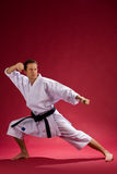 Adult karate black belt Royalty Free Stock Image