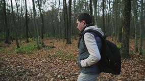 Adult male dressed warmly for the autumn walk in the woods, enjoying the forest. Adult man with dark hair, dressed warmly for the autumn walk in the woods stock video footage