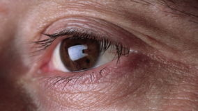 Adult Male Eyes Watching, Eye Movement stock video footage