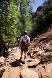 Adult Male Hiking in the Desert Royalty Free Stock Photography