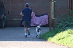 Adult male jogging with a spotty dog stock photo