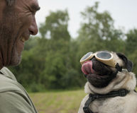 Adult male smiling at pug dog with goggles Stock Photo