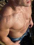 Adult male torso. High angle view Royalty Free Stock Images