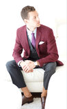 Adult Male Wearing A Burgundy Three Piece Suit Royalty Free Stock Image