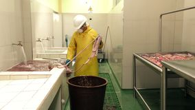 Adult Man Cleaning And Preparation Of Animal Intestines In Food Industry