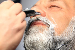Adult man color beard Royalty Free Stock Photography