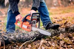 Adult man cutting trees with chainsaw and tools Stock Photos