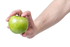 Adult man hand holding green apple Royalty Free Stock Images