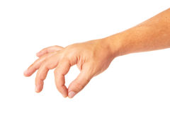Adult man hand to hold something isolated on white. This image has attached release stock photography