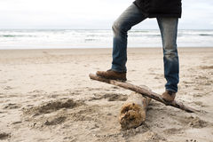 Adult man on a log by beach Royalty Free Stock Photos