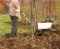 Adult man  plowing. Close-up Royalty Free Stock Photos