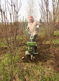 Adult man  plowing  spring yard Stock Image