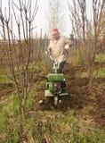 Adult man  plowing  spring yard Stock Image