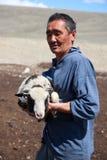 The adult man  shepherd Royalty Free Stock Image