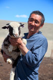 The adult man shepherd. The adult man the shepherd carries on hands of a small lamb stock photography