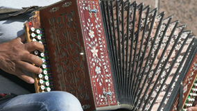 Adult man sitting on a chair plays the accordion stock footage