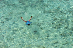 Adult man snorkeling in a tropical sea Stock Images