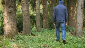 Adult man walking the dog in the woods. concept nature health. Adult man walking the dog in the woods. concept nature and health stock footage