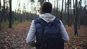 Adult man walks along the autumnal forest to get new impressions of nature. Adult man dressed in gray jeans, scarf, vest and blue backpack walks along the stock footage