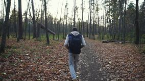Adult man walks along the autumnal forest to get new impressions of nature. Adult male with black hair, dressed in gray jeans, a dark blue vest, backpack stock video footage