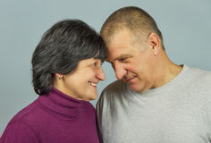 Adult man and woman. Stock Image