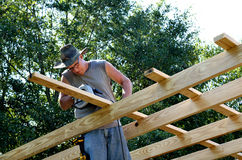 Adult middle age man building Stock Photography