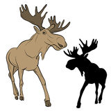 Adult moose go black silhouette Stock Images
