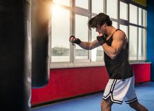 Adult muscular man boxing with punching bag stock photo