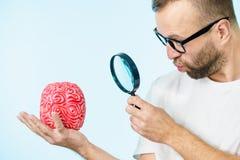 Man looking at human brain royalty free stock image