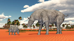 Adult Paraceratherium and baby Paraceratherium Royalty Free Stock Photography