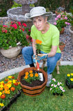 Adult planting flowers Stock Photos