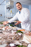 Adult professional man standing near fish counter Royalty Free Stock Image