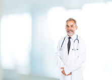 Adult qualified physician diagnostician Royalty Free Stock Photography