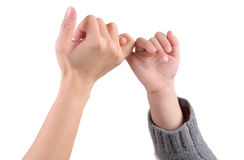 An adult and a child are making a pinky promise / pinkie swear, isolated with white background Royalty Free Stock Image
